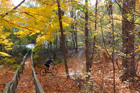 20101023-Don-Valley-Biking