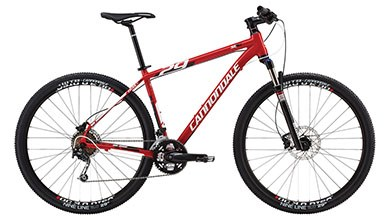 cannondale-trail293-1029
