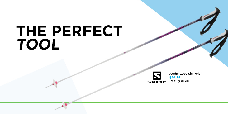 Ski-Pole